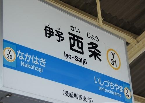 _DSC3380-1.jpg